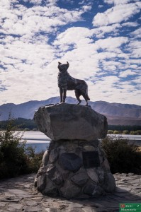 Pomnik na cześć psów pasterskich