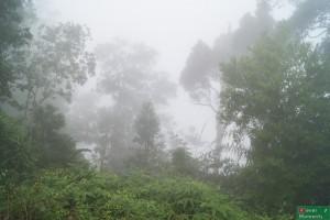 Porażka nr trzy: gęsta mgła w drodze na punkt widokowy...