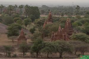 Bagan-14