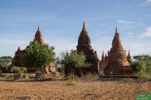 Bagan-42
