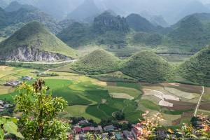 W Wietnamie można znaleźć 50 odcieni...zieleni!